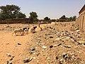 Niger, Boubon (6), village scene.jpg