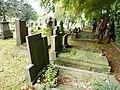 Nijmegen begraafplaats Daalseweg, twee rijen graven oorlogsslachtoffers.JPG