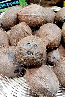 how to put hole in coconut shell
