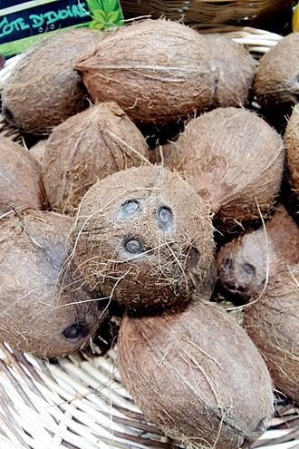 Coconut - Dehusked coconut shells from Ivory Coast showing the face-like markings.