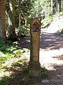 Oberharmersbach, grosser Hanskakobweg, Etappe 3 nach Zell 1.jpg