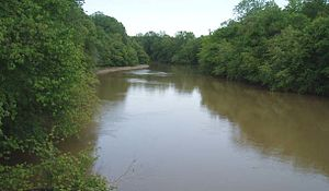 Obion River - The Obion River near Obion, Tennessee