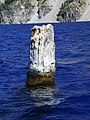 Old Man of the Lake - Crater Lake National Park - NPS 2.jpg