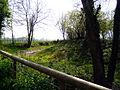 Old Moat, Pembridge - geograph.org.uk - 1157786.jpg