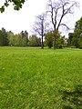 Oleksandria Park (May 2019) 7.jpg