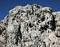 Olsztyn zamek skała wapienna 2010 p.jpg