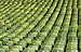 Olympic Stadium Munich - Rows of Seats, April 2019 -03.jpg