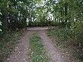 Open gate - Ashmoor Lane - geograph.org.uk - 1519120.jpg