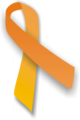 Orange ribbon.png