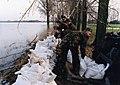 Overstroming Maas bij Borgharen, 1995 (3).jpg