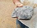 PB holding Murrili Meteorite.jpg