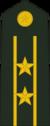 лейтенант полковник