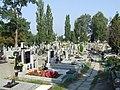 PL Warsaw Wawrzyszew cemetery view.jpg