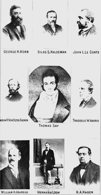US-American entomologists of the 1800s PSM V76 D472 Entomologists.png