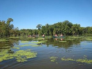 Upper Mississippi River National Wildlife and Fish Refuge - Paddling the Mississippi River