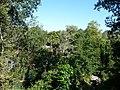 Paignton , Paignton Zoo - geograph.org.uk - 1483411.jpg