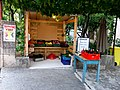 Pakoštane 19 Croatia12.jpg