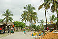 Palm trees and people in Dar es Salaam.jpg