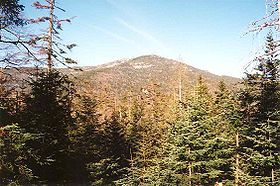 Panther Peak seen from Bradley Pond leanto.jpg