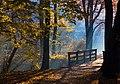 Park zamkowy w Pszczynie 03promykjck.jpg
