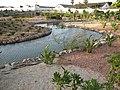 Parque Forestal de Melilla.jpg