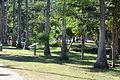 Parque Sinaloa 001.JPG