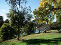 Parramatta River - Parramatta, NSW (7834153680).jpg