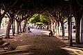 Paseo de Reding (22594327917).jpg