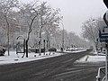 Paseo de la Castellana (Madrid) 39.jpg