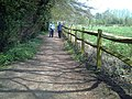 Pathway by the river Darent - geograph.org.uk - 412586.jpg