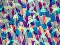 Patterns (31490499363).jpg