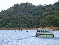 Periyar National Park - 2.JPG
