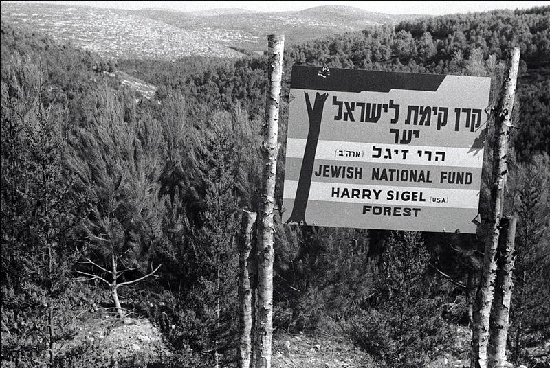 יערות מנשה בעמק יזרעאל
