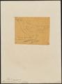 Pithys leucaspis - 1854 - Print - Iconographia Zoologica - Special Collections University of Amsterdam - UBA01 IZ16400337.tif