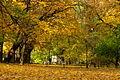 Planty Jesień 2.jpg