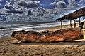 Playa Ventura, Acapulco, Guerrero- Ventura Beach, Guerrero (24953644766).jpg