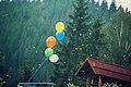 Poloninska Verano 2012 (8882143318).jpg