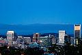 Portland Skyline-02.jpg