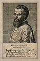 Portrait of Andreas Vesalius (1514 - 1564), Flemish anatomist Wellcome V0006026EL.jpg