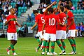 Portugal U-19 players celebrate (1).jpg