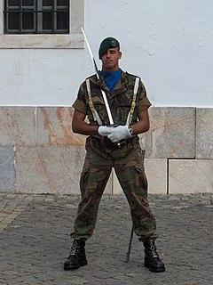 Rapid Reaction Brigade (Portugal)