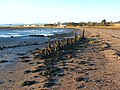 Posts on the shore - geograph.org.uk - 1078522.jpg