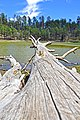 Potato Lake (HDR) (5733788727).jpg