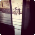 Primomaggioroma.png