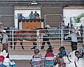 Private horse auction.jpg
