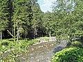 Promenade le long de la Dranse en direction de Montriond - panoramio.jpg