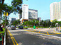Pui Shing Road 2012 part1.JPG