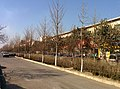 Qingzhou, Weifang, Shandong, China - panoramio (15).jpg