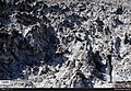 Qom Salt Dome 13951209 21.jpg