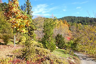 Quarryhill Botanical Garden - Image: Quarryhill Botanical Garden DSC03640